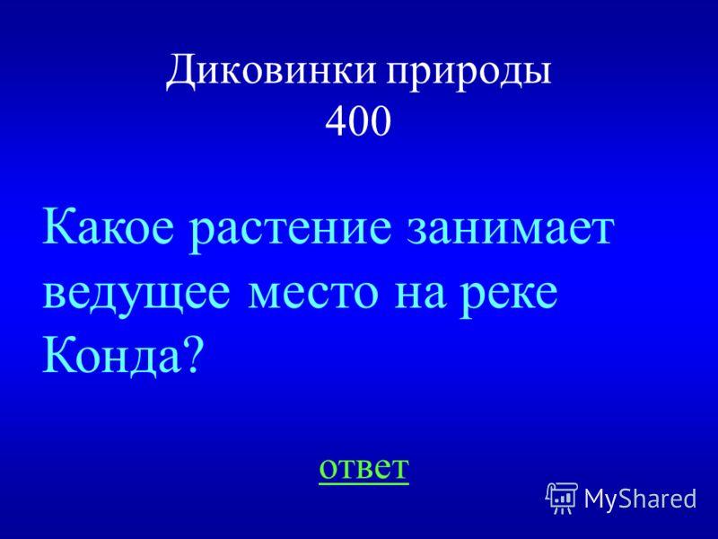 НАЗАД ВЫХОД Шиповник 300