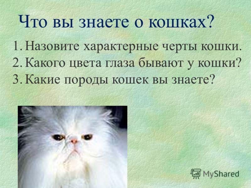 Кошки 2 какого цвета глаза бывают