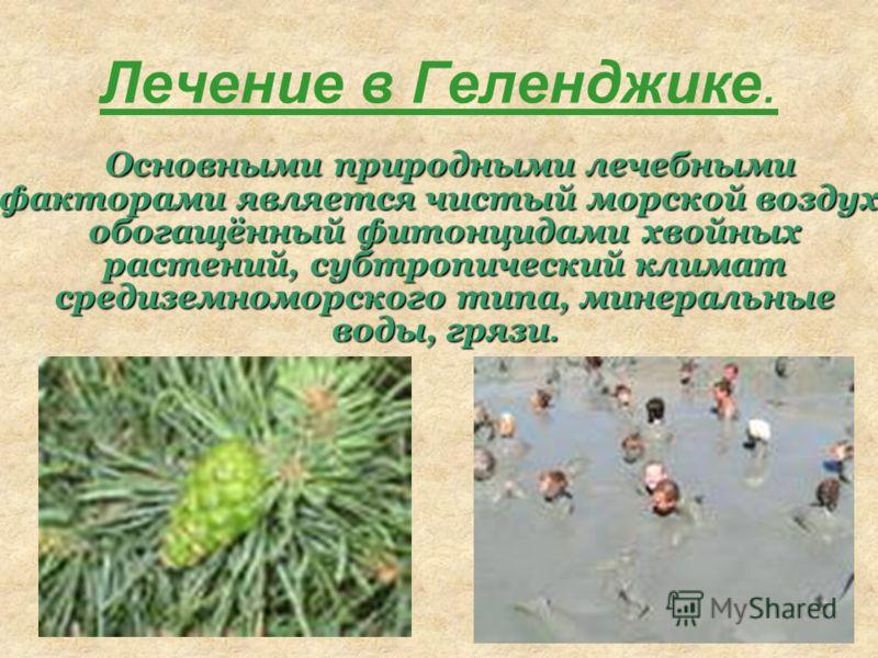 Лечение в Геленджике. Основными природными лечебными факторами является чистый морской воздух, обогащённый фитонцидами хвойных растений, субтропический климат средиземноморского типа, минеральные воды, грязи.