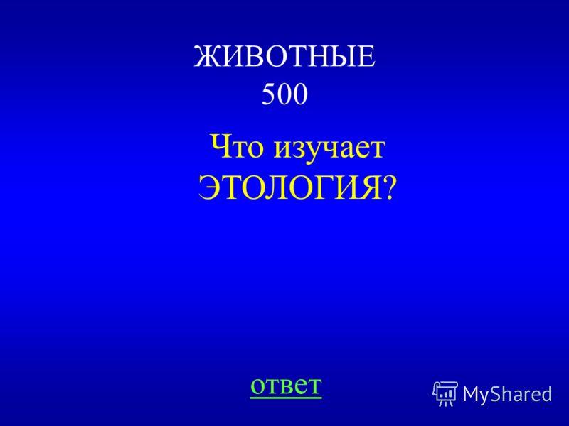 НАЗАД ВЫХОД 1)540 + 360 = 900 (п) всего пакетов 2)1800 : 900 = 2 (кг) в каждом 3)540 * 2 = 1080 (кг) в первый магазин 4)360 * 2 = 720 (кг) во второй магазин Ответ: 1080 кг и 720 кг