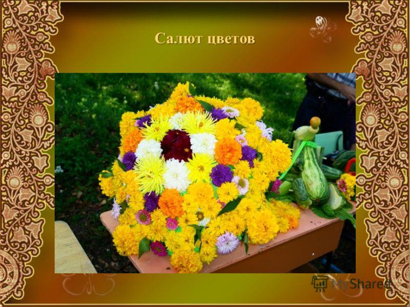 Салют цветов