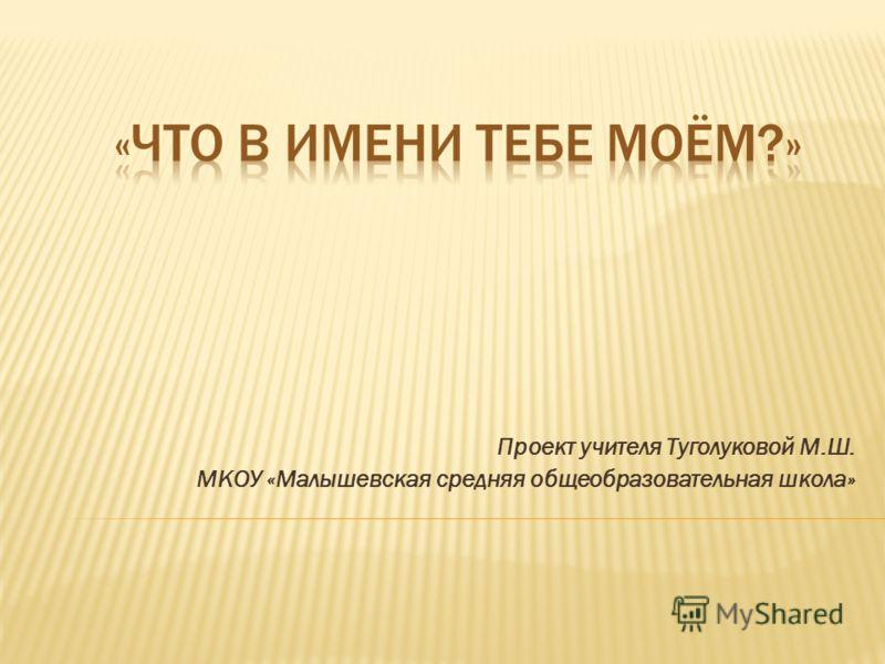 Проект учителя Туголуковой М.Ш. МКОУ «Малышевская средняя общеобразовательная школа»