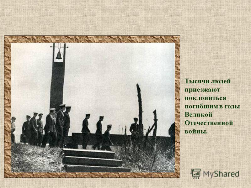 Тысячи людей приезжают поклониться погибшим в годы Великой Отечественной войны.