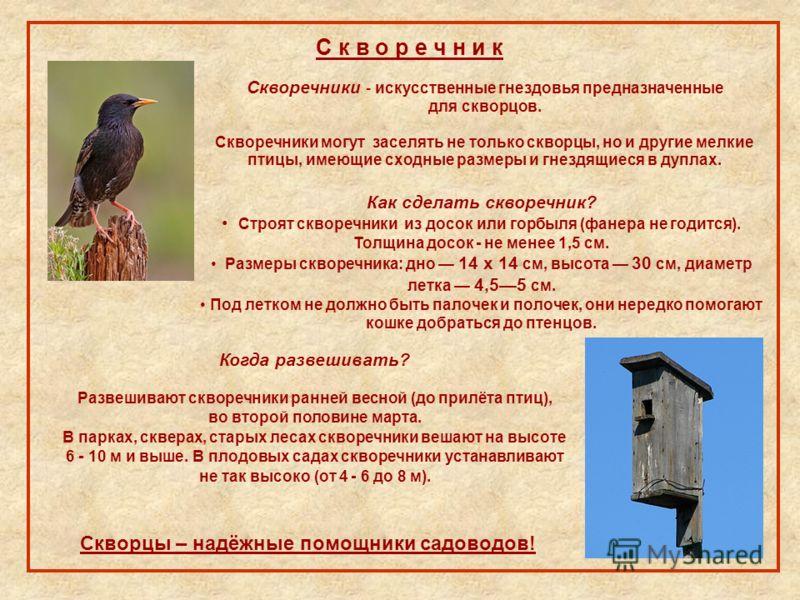 С к в о р е ч н и к Скворечники - искусственные гнездовья предназначенные для скворцов. Скворечники могут заселять не только скворцы, но и другие мелкие птицы, имеющие сходные размеры и гнездящиеся в дуплах. Как сделать скворечник? Строят скворечники