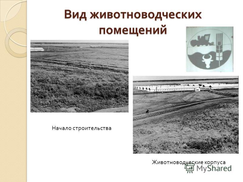 Вид животноводческих помещений Начало строительства Животноводческие корпуса