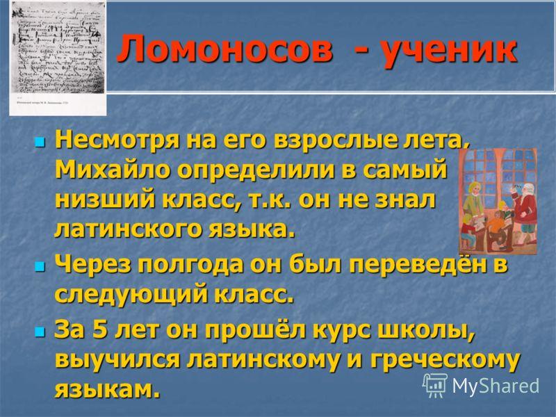 Ломоносов - ученик Ломоносов - ученик Несмотря на его взрослые лета, Михайло определили в самый низший класс, т.к. он не знал латинского языка. Несмотря на его взрослые лета, Михайло определили в самый низший класс, т.к. он не знал латинского языка.