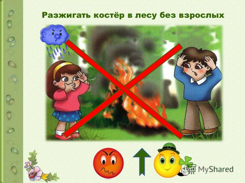 Разжигать костёр в лесу без взрослых