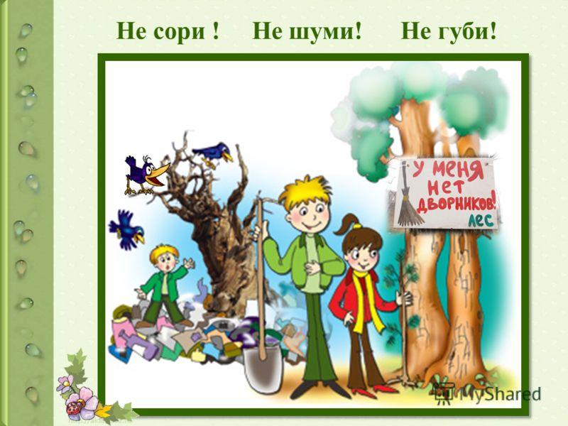 Очищать лес от мусора