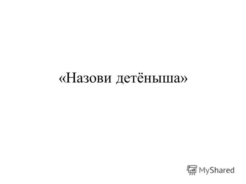 «Назови детёныша»