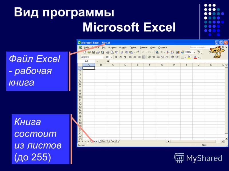 Microsoft EXCEL Приложение семейства Microsoft Office