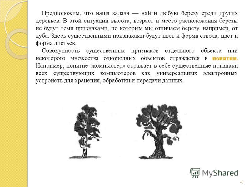 13 Предположим, что наша задача найти любую березу среди других деревьев. В этой ситуации высота, возраст и место расположения березы не будут теми признаками, по которым мы отличаем березу, например, от дуба. Здесь существенными признаками будут цве