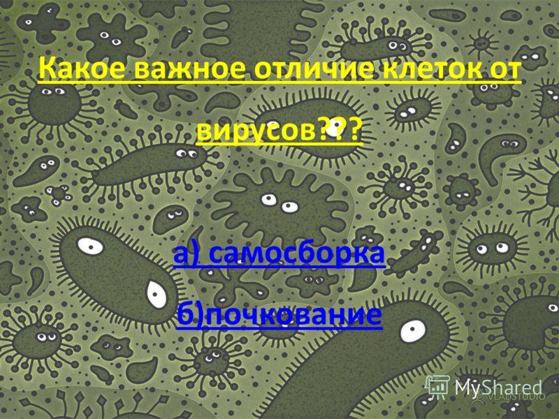 Сколько гипотез о происхождении вирусов??? а) 4 б)3 а) 4 б)3
