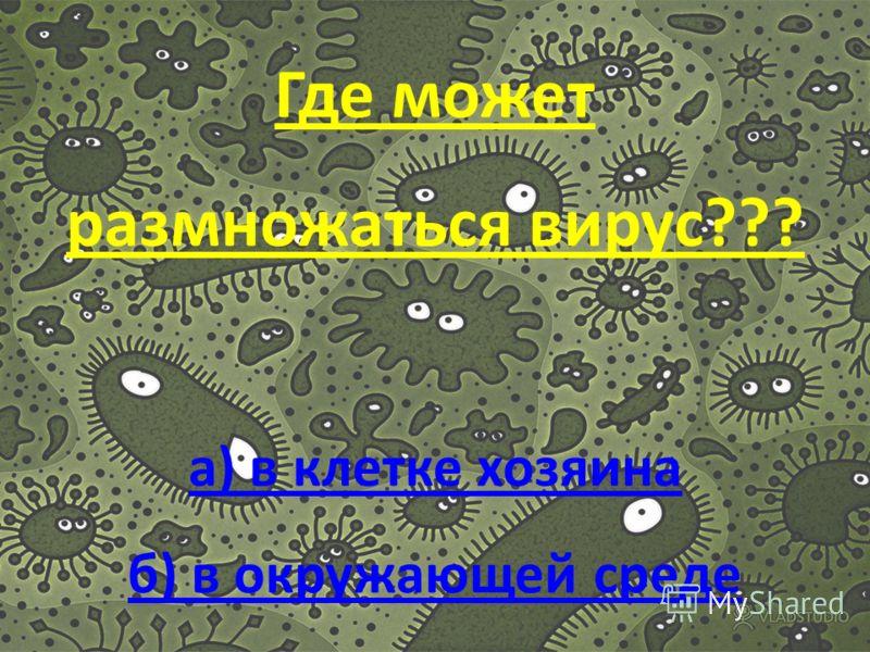 Из чего состоит вирус?? а)белка и нуклеиновой кислоты б) из ДНК и РНК а)белка и нуклеиновой кислоты б) из ДНК и РНК