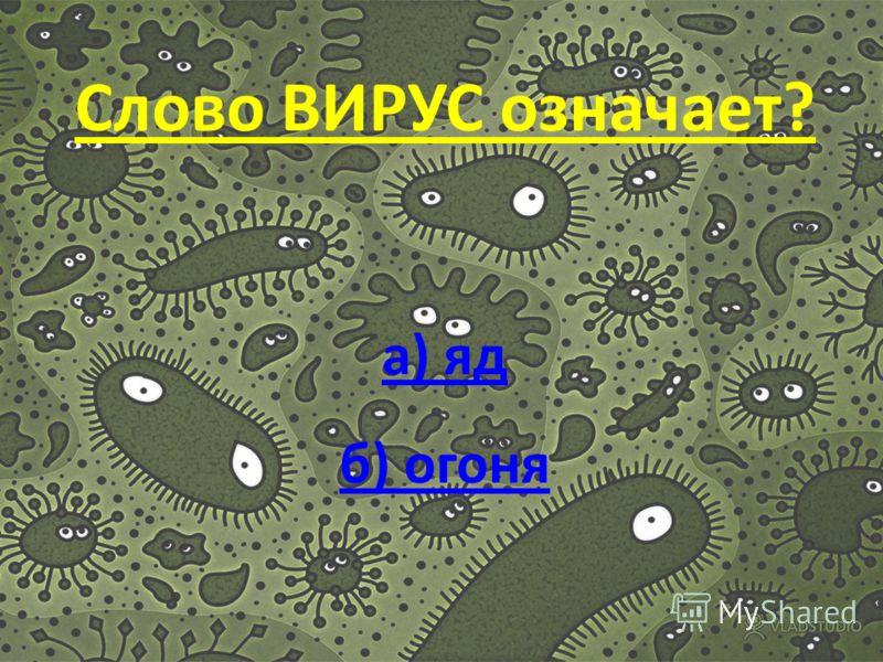 В каком году ученый Ивановский открыл Вирусы??? а) 1852 б)1856 а) 1852 б)1856