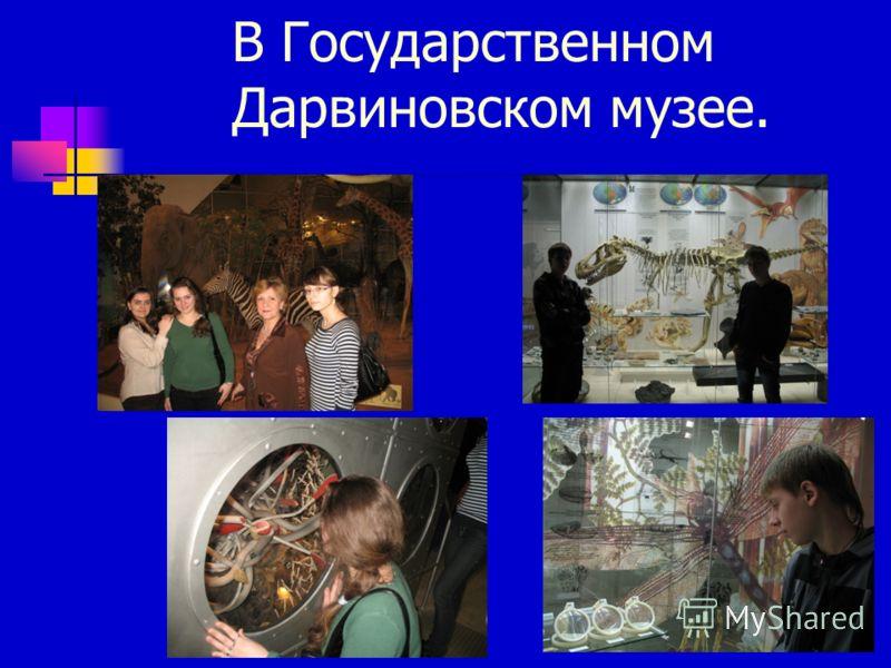 В Государственном Дарвиновском музее.