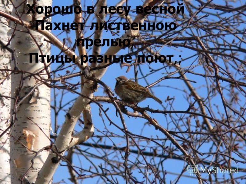 Хорошо в лесу весной Пахнет лиственною прелью, Птицы разные поют,;