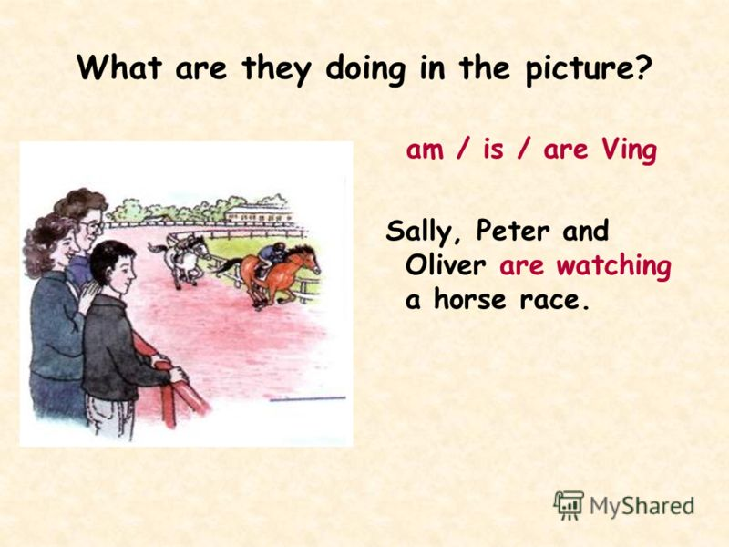 What are they doing in the picture? am / is / are Ving Sally, Peter and Oliver are watching a horse race.