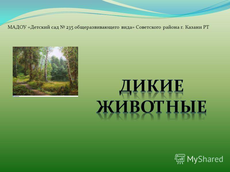 МАДОУ «Детский сад 235 общеразвивающего вида» Советского района г. Казани РТ