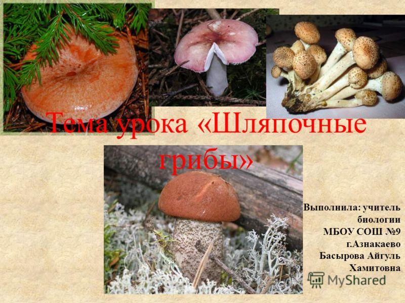 Тема урока «Шляпочные грибы» Выполнила: учитель биологии МБОУ СОШ 9 г.Азнакаево Басырова Айгуль Хамитовна