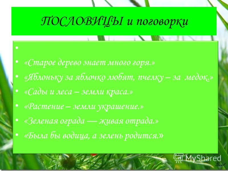 ПОСЛОВИЦЫ и поговорки «Старое дерево знает много горя.» «Яблоньку за яблочко любят, пчелку – за медок.» «Сады и леса – земли краса.» «Растение – земли украшение.» «Зеленая ограда живая отрада.» «Была бы водица, а зелень родится. » «Старое дерево знае