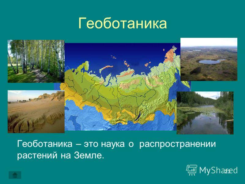 23 Геоботаника Геоботаника – это наука о распространении растений на Земле.
