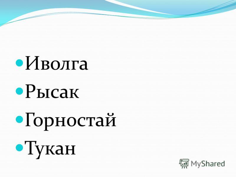Иволга Рысак Горностай Тукан