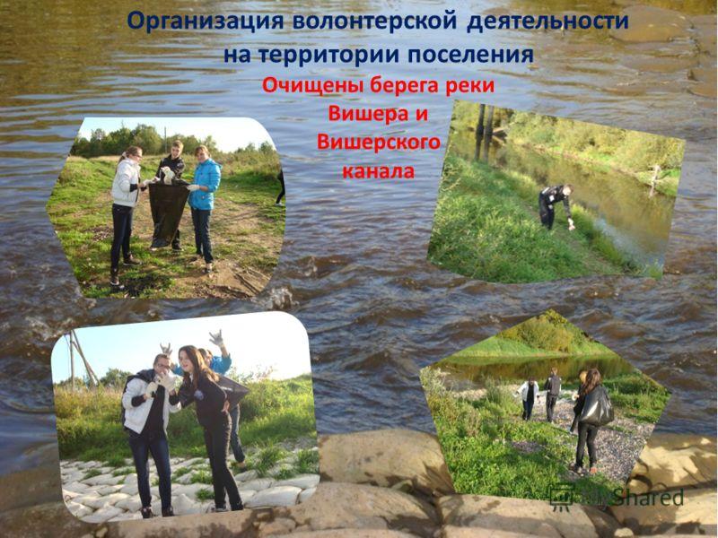 Организация волонтерской деятельности на территории поселения Очищены берега реки Вишера и Вишерского канала
