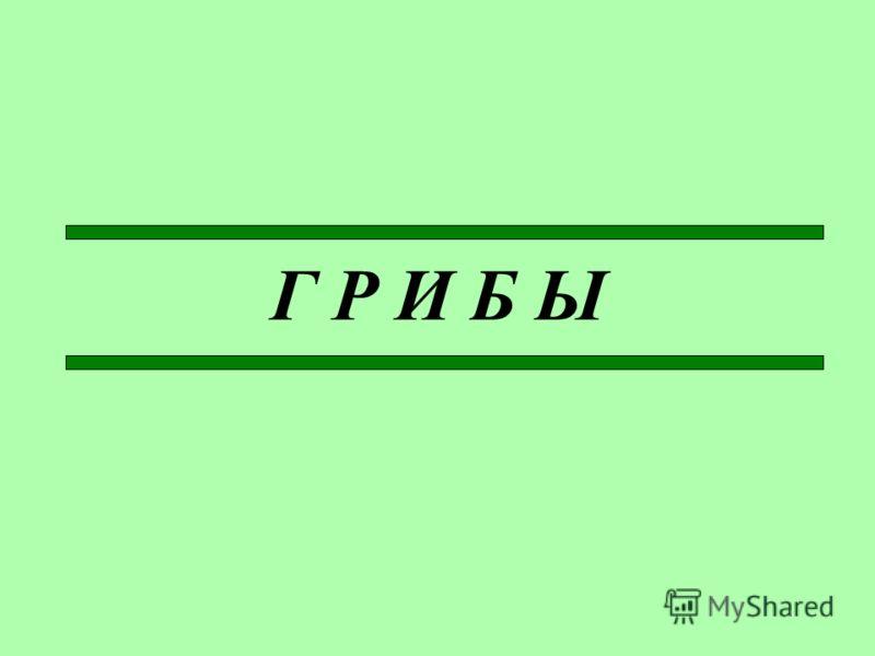 Г Р И Б Ы