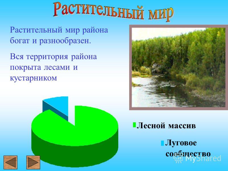 Растительный мир района богат и разнообразен. Вся территория района покрыта лесами и кустарником Лесной массив Луговое сообщество