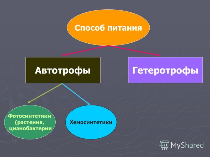 Способ питания ГетеротрофыАвтотрофы Фотосинтетикм (растения, цианобактерии Хемосинтетики