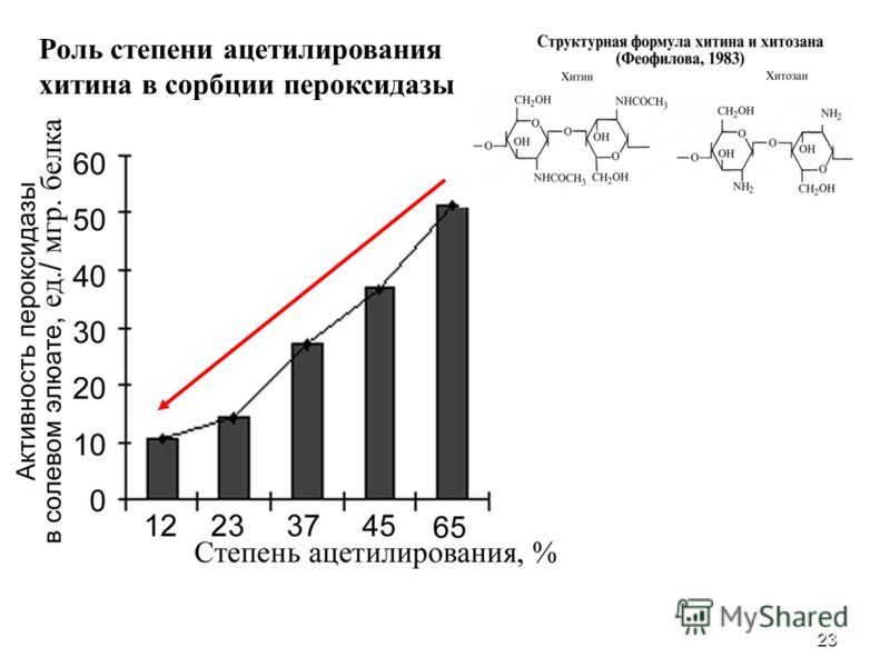 23 Роль степени ацетилирования хитина в сорбции пероксидазы