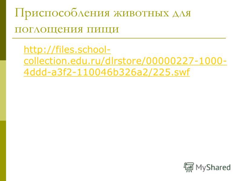 Приспособления животных для поглощения пищи http://files.school- collection.edu.ru/dlrstore/00000227-1000- 4ddd-a3f2-110046b326a2/225.swf