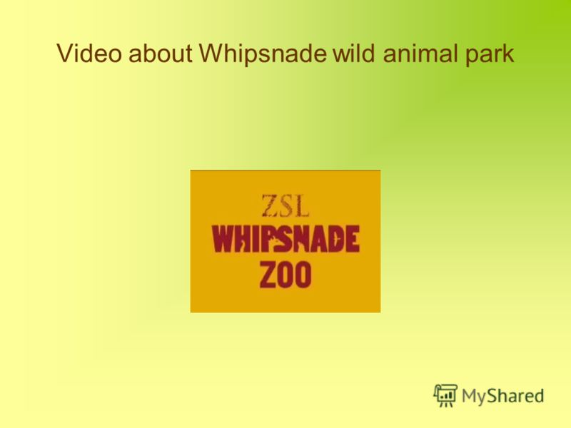 Video about Whipsnade wild animal park