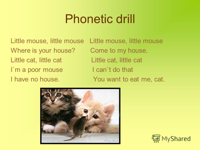 Phonetic drill Little mouse, little mouse Where is your house? Come to my house. Little cat, little cat I`m a poor mouse I can`t do that I have no house. You want to eat me, cat.
