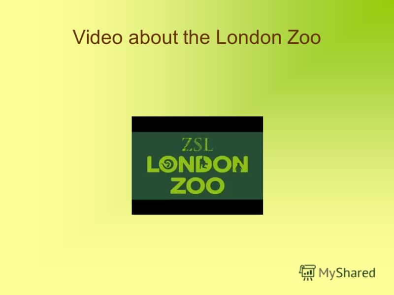 Video about the London Zoo