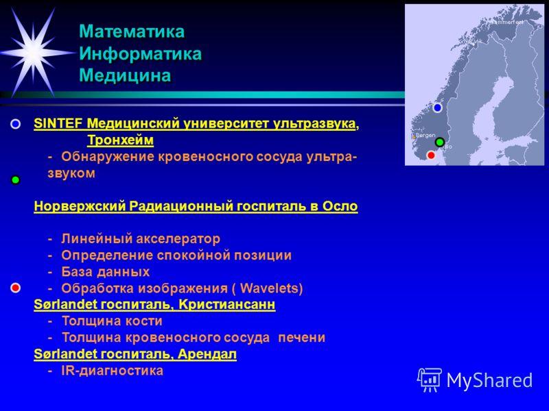 Mатематика Информатика Медицина SINTEF Медицинский университет ультразвука, Тронхейм -Обнаружение кровеносного сосуда ультра- звуком Норвержский Радиационный госпиталь в Осло -Линейный акселератор -Определение спокойной позиции -База данных -Обработк