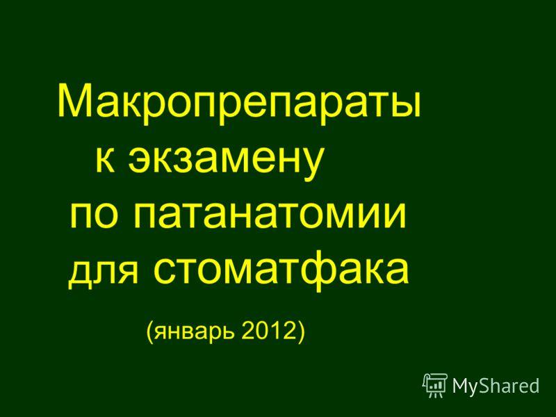 Макропрепараты к экзамену по патанатомии для стоматфака (январь 2012)