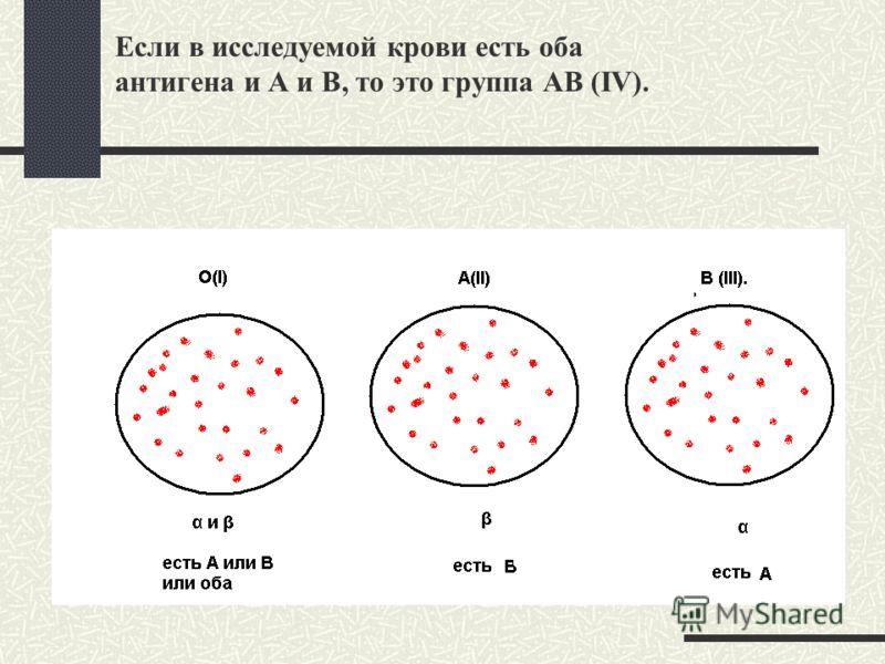 Если в исследуемой крови есть оба антигена и А и В, то это группа АВ (IV).