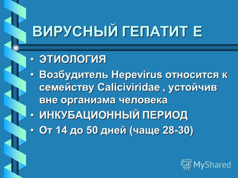 ВИРУСНЫЙ ГЕПАТИТ E ЭТИОЛОГИЯЭТИОЛОГИЯ Возбудитель Hepevirus относится к семейству Caliciviridae, устойчив вне организма человекаВозбудитель Hepevirus относится к семейству Caliciviridae, устойчив вне организма человека ИНКУБАЦИОННЫЙ ПЕРИОДИНКУБАЦИОНН