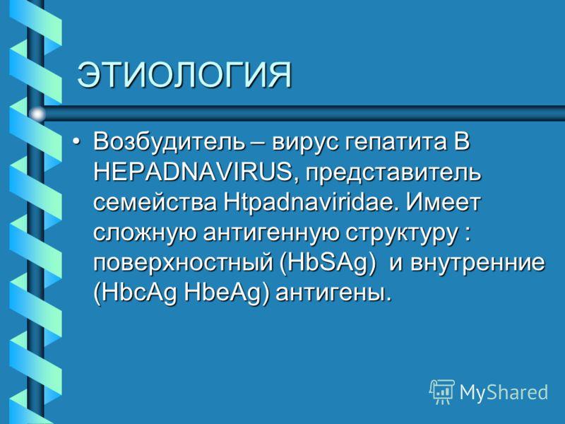 ЭТИОЛОГИЯ Возбудитель – вирус гепатита В HEPADNAVIRUS, представитель семейства Htpadnaviridae. Имеет сложную антигенную структуру : поверхностный (HbSAg) и внутренние (HbcAg HbeAg) антигены.Возбудитель – вирус гепатита В HEPADNAVIRUS, представитель с