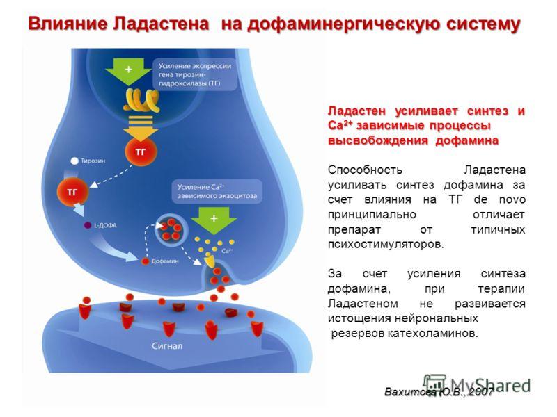 Сюняков С.А. с соавт., 2006