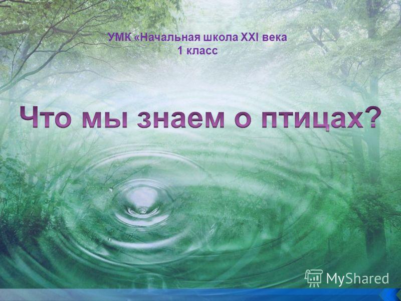 УМК «Начальная школа XXI века 1 класс