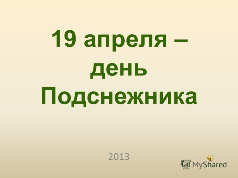 19 апреля – день Подснежника 2013