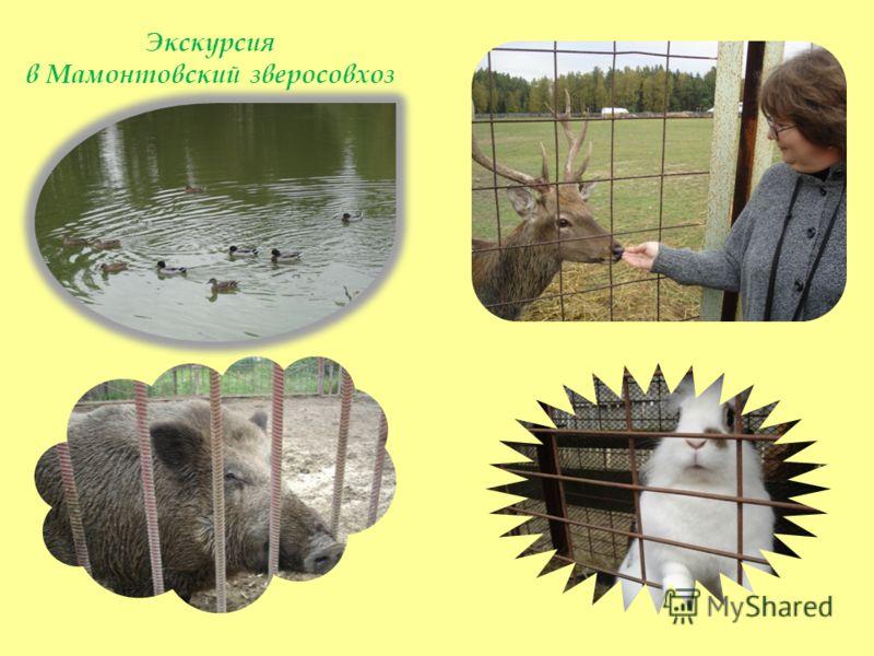 Экскурсия в Мамонтовский зверосовхоз