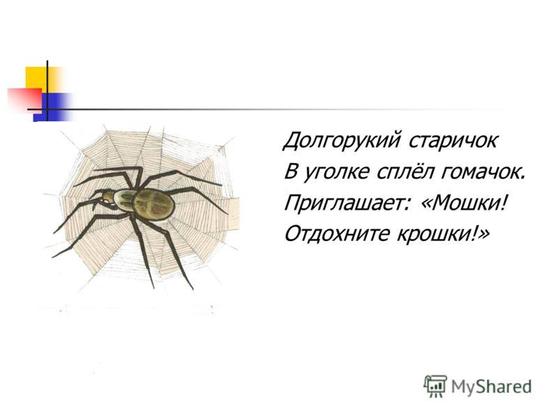 Составьте высказывание со словами «цветок», «бабочка».