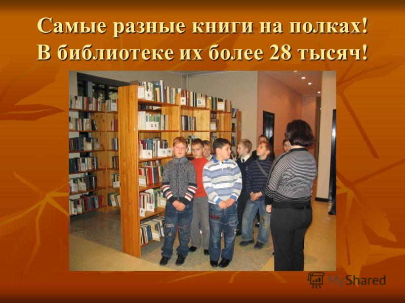Самые разные книги на полках! В библиотеке их более 28 тысяч!
