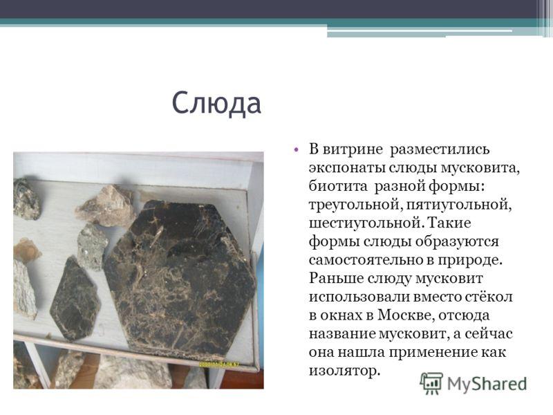 Слюда В витрине разместились экспонаты слюды мусковита, биотита разной формы: треугольной, пятиугольной, шестиугольной. Такие формы слюды образуются самостоятельно в природе. Раньше слюду мусковит использовали вместо стёкол в окнах в Москве, отсюда н