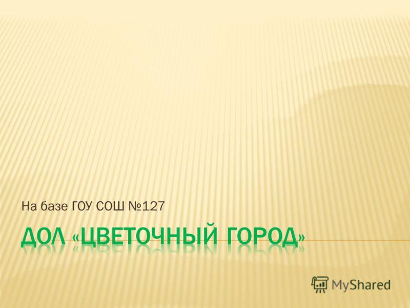 На базе ГОУ СОШ 127