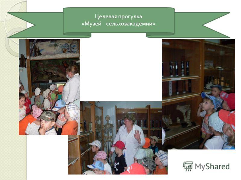 Целевая прогулка « Музей сельхозакадемии »
