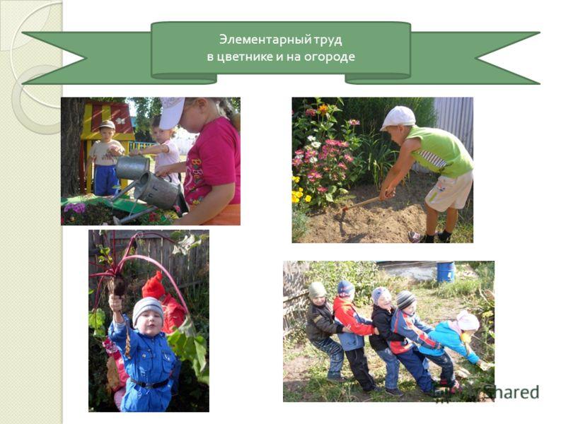 Элементарный труд в цветнике и на огороде